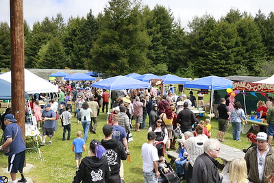 Hundreds attended the Spamley Cup Cook-off at Redwood Fields in Cutten on Sunday. One organizer said he expected as many as 350 to attend. (Hunter Cresswell - The Times-Standard)