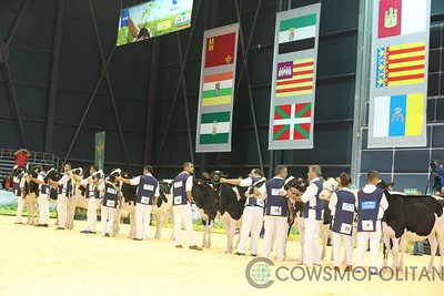 Junior Holstein Show