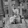 Bernardinų kapinės Vilniuje 1996m.