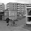 Pilaitė,Vilnius...1995m.