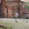 Vilnius.Bernardinų bažnyčios kiemely...