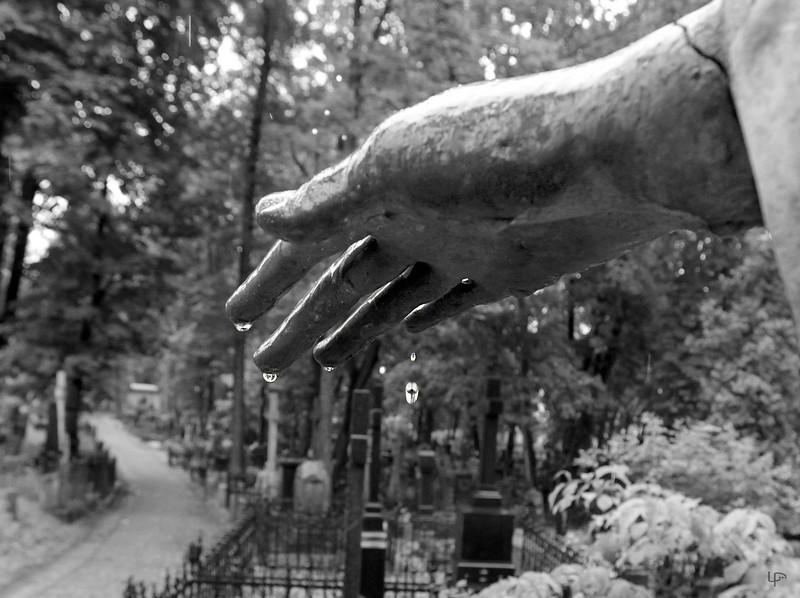 Bernardinų kapinės...