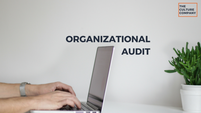 Organizational Audit