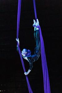 210305_070_Circus-1