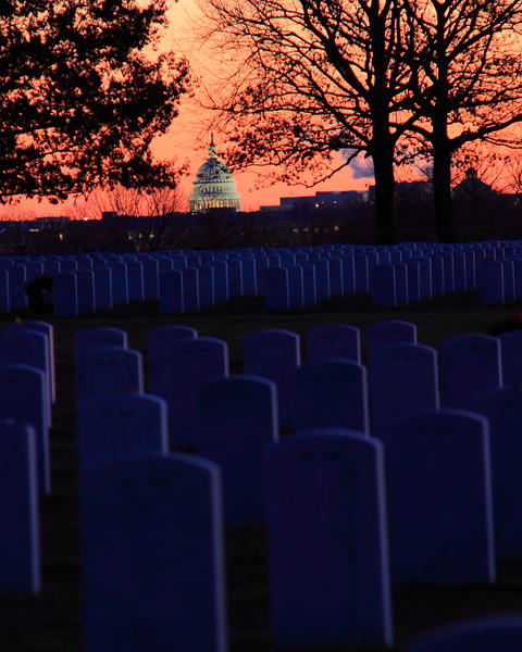 091212_ArlingtonWreaths_5802r1a