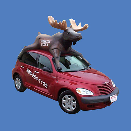 Moose Car Top