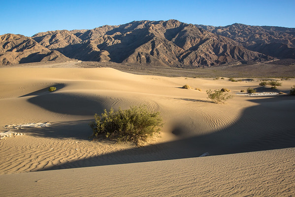 Mesquite Flat Sand Dunes and Panamint Range, Death Valley National Park, California