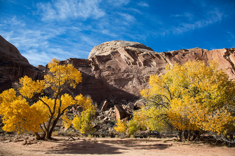 Barrier Canyon, Canyonlands National Park, Utah