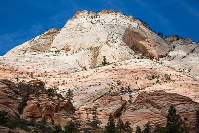 White Cliffs, Mount Carmel Highway, Zion National Park, Utah