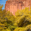 Fall Colors and the Cliffs of the Waterpocket Fold, Capitol Reef, Utah