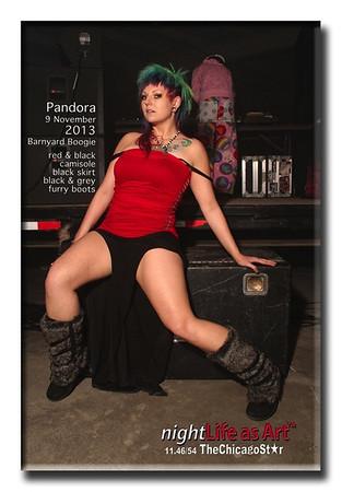9nov2013 46 barnyardboogie title