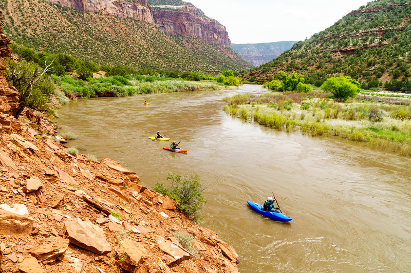 Daphnee Tuzlak heads through the flats as the Dolores River transitions from piñion forest to slickrock desert.