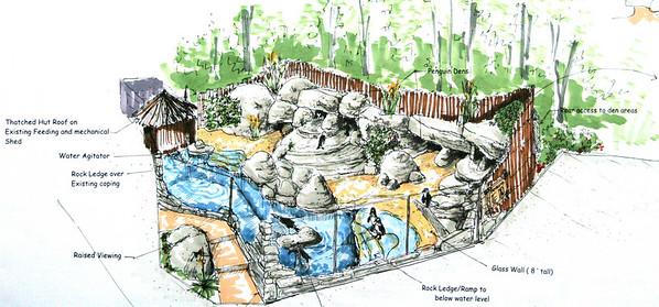 Penguin Habitat redesign, Habitat concept and working drawing design and details. Fall 2007, with French & Parrello Engineering of Wall Twp., Essex Co. Parks System,NJ, Completed July 2008