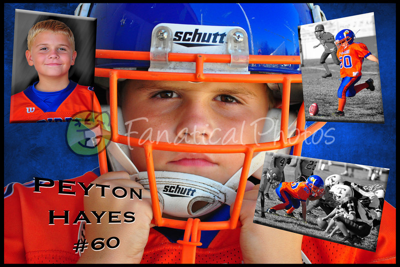 Hayes poster2