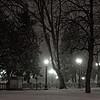 Denver's Capitol Hill park