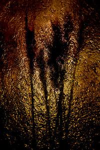 Silouette-Rich Fiedorowicz