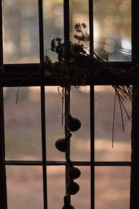 Silhouette - Phyllis Peterson