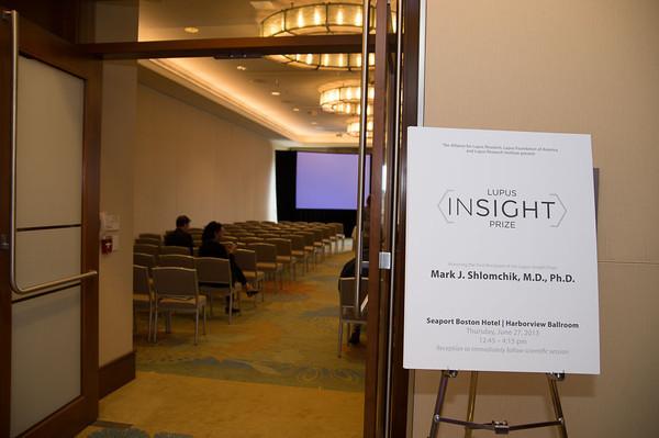 Lupus Insight Prize 2013