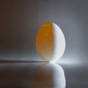 Just an Egg