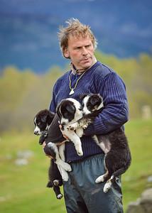 Highland Shepherd