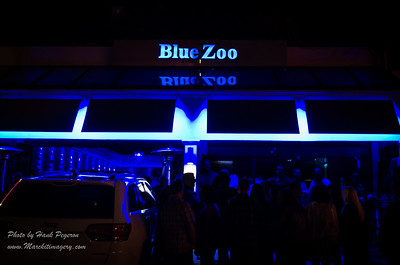 INDULGE Magazine & Blue Zoo Grand Opening