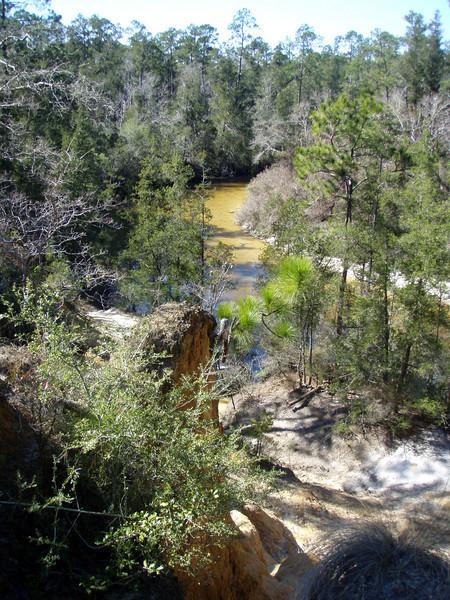 View from the bluffs above Juniper Creek.