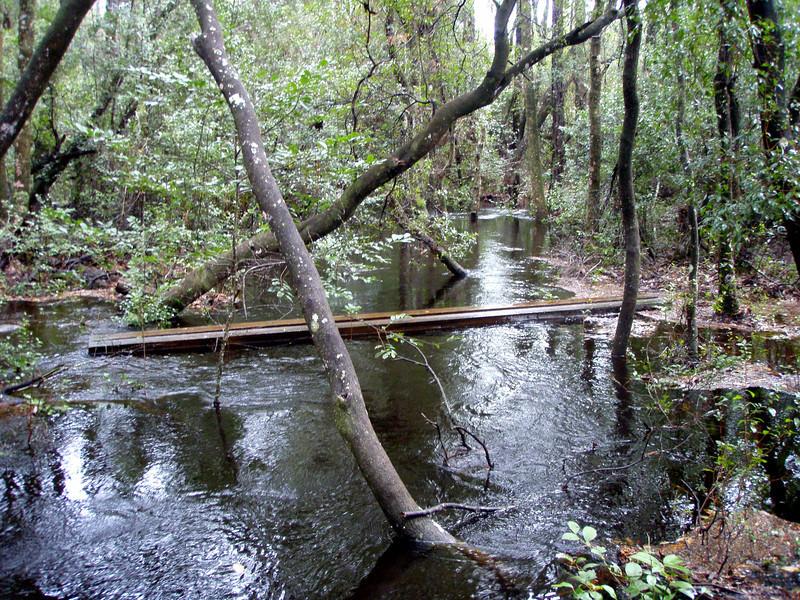 Black Creek bridge, surrounded by water.