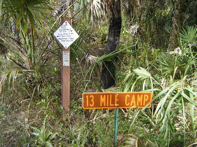 2010 Hammock Hanger Swamp Tromp