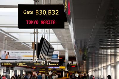 Tokyo Flight 1st Anniversary-10