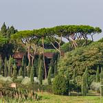 Rome - The Catacombs of San Callisto - Beautiful Italian Landscape