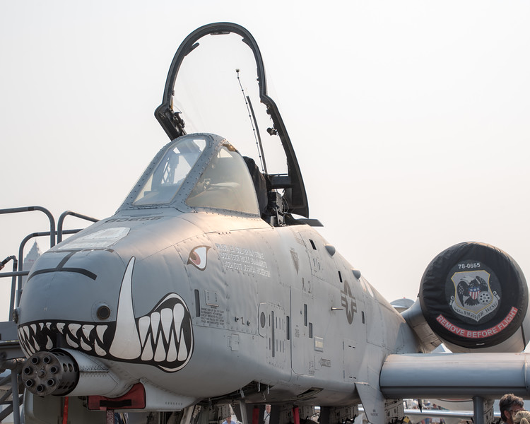 The Nose of the Warthog