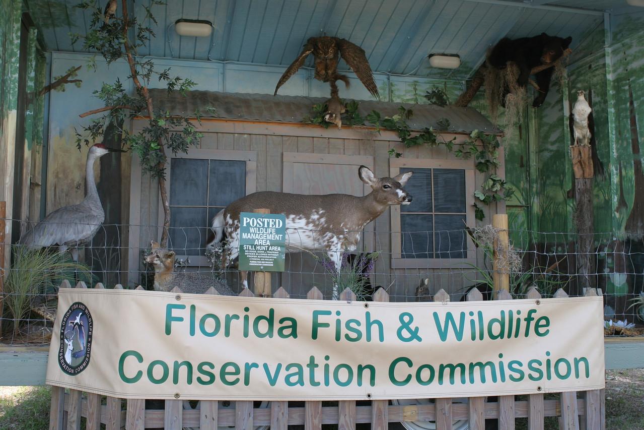 The FWC traveling educational exhibit<br /> PHOTO CREDIT: Bob Stone / Florida Trail Association