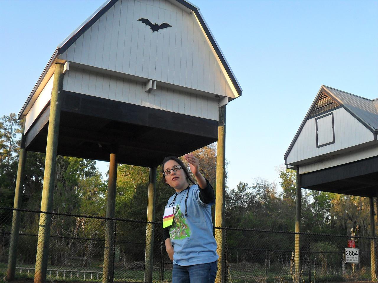 Bat House - Friday night