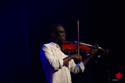 fa18blackviolin-105