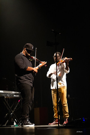 fa18blackviolin-102