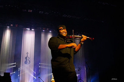 fa18blackviolin-116