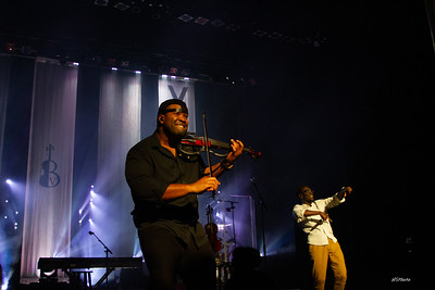 fa18blackviolin-117