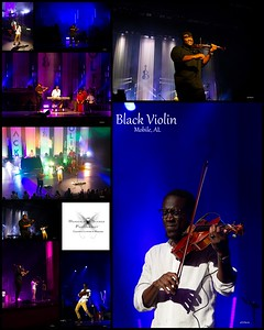 HSPhoto BlackViolin fb