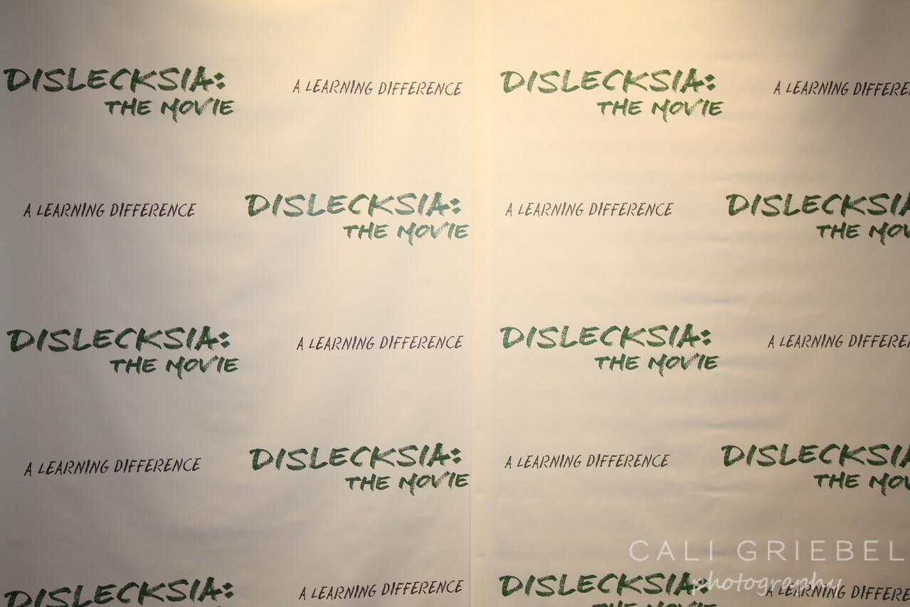 dislecksia-party-IDA-SD-213