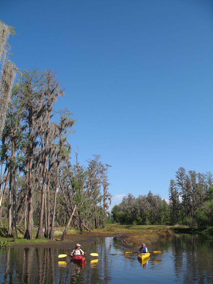 Launching into beautiful Shingle Creek