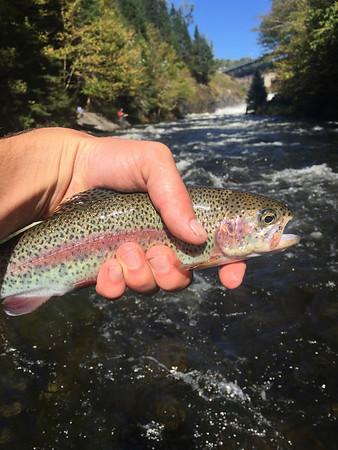 Outing Club Fishing Trip to Pittsburg