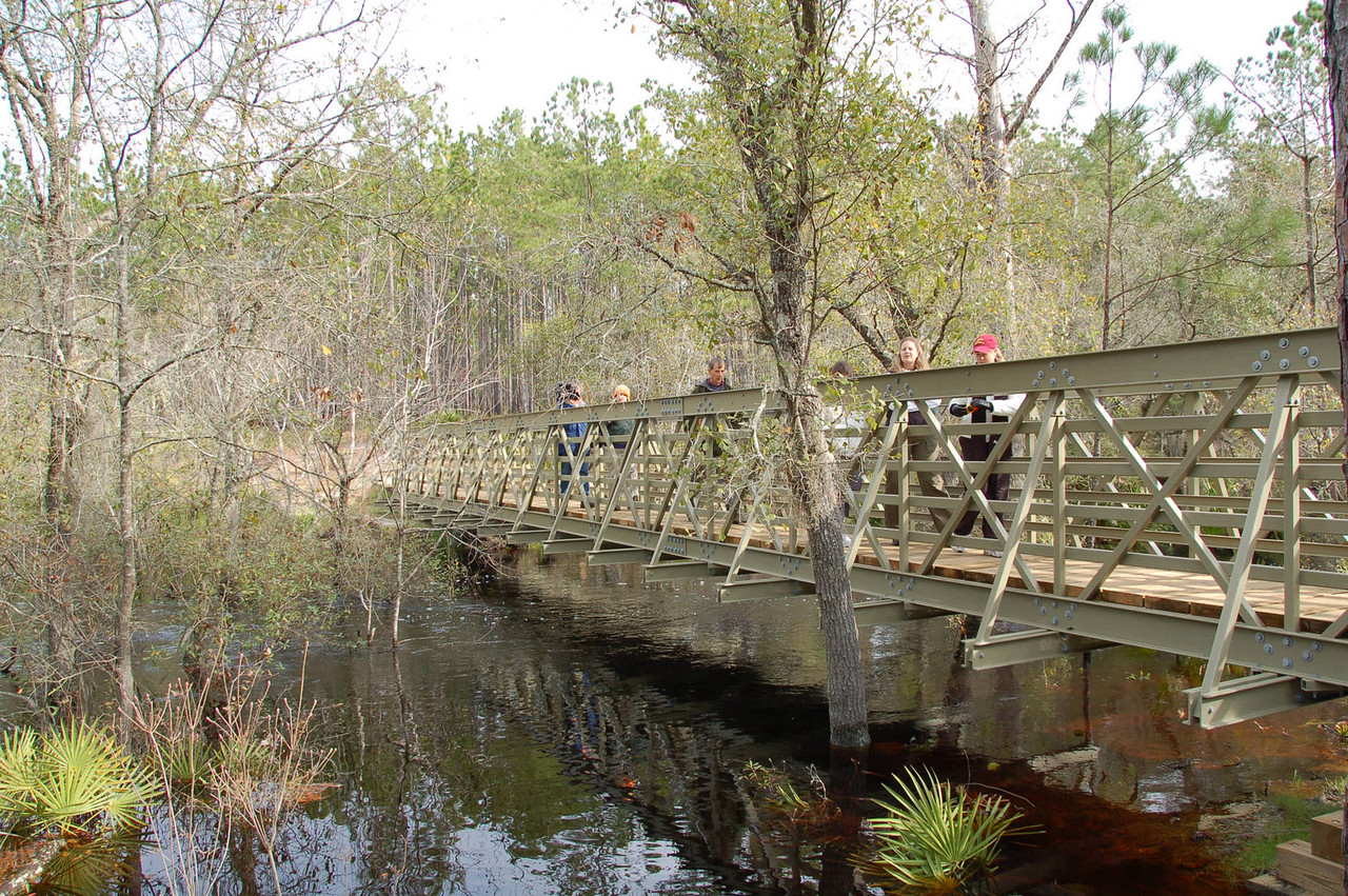 The completed Monkey Creek Bridge on February 3, as seen from the south shore.     PHOTO CREDIT:  Kent Wimmer / Florida Trail Association
