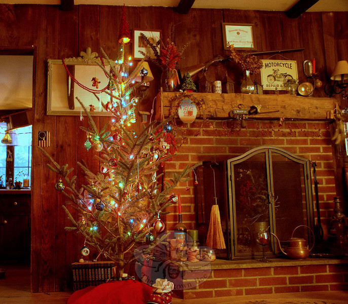 Christmas trees are beautiful no matter what their size, shape or density.  (Bobowick photo)