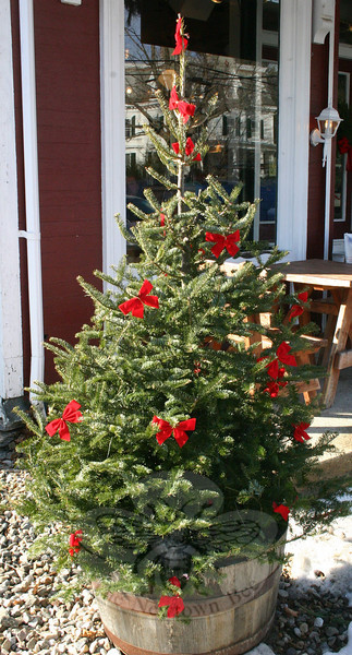 A small pine tree in a bucket outside Newtown General Store has been dressed up for the holidays.  (Hicks photo)