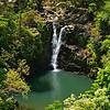 RM Puohokamoa Falls on the way to Hana 700_5428