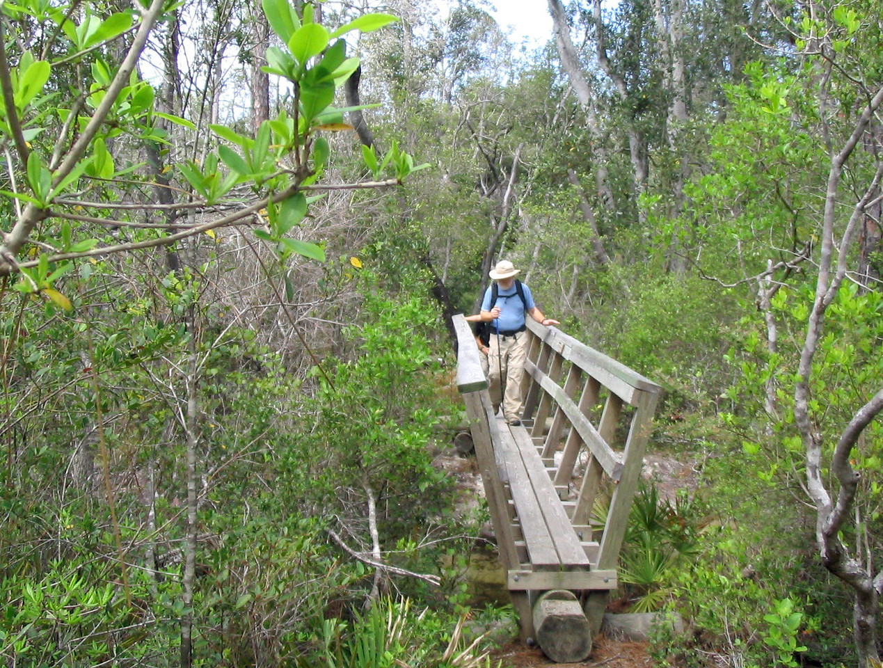 Dean Creek Bridge<br /> PHOTO CREDIT: Linda Benton/Florida Trail Association