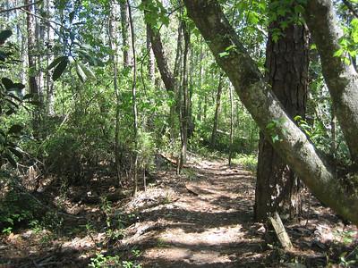 2007 Panhandle Trace Hike