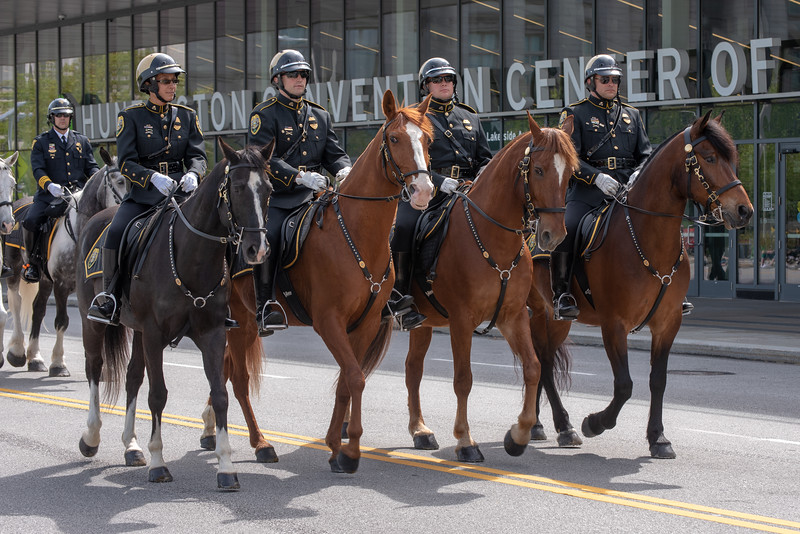 Cleveland Metropark Rangers Mounted Unit