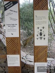 Bee Condos