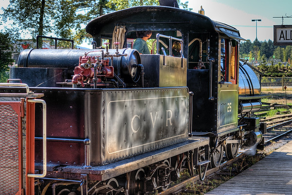 Train - BC Forest Discovery Centre, Duncan, BC, Canada